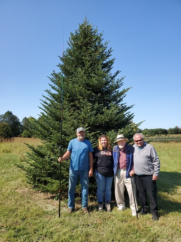 This magnificent Fraser Fir was selected for the Blue Room. Pictured (left to right) Dan Taylor and