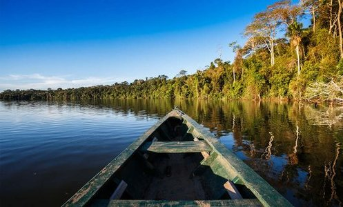 Amazon Rainforest boat