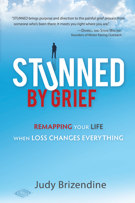 Stunned By Grief book cover jpg