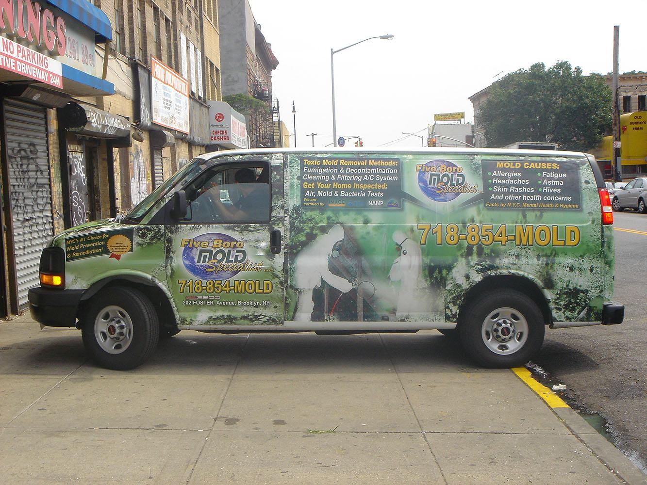 Five Boro Mold Specialist in NYC