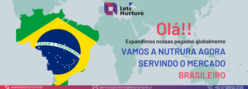 Brazilian, digital IT services and solutions
