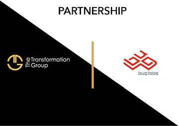 BUG LABS SIGNALPATTERN THE TRANSFORMATION GROUP TTG PARTNERSHIP
