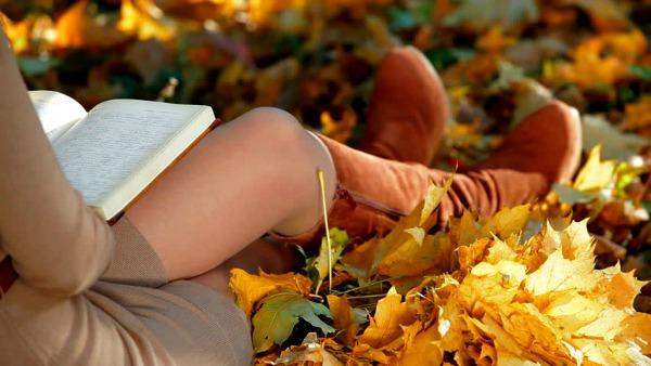 Best of Autumn Reading, 2016