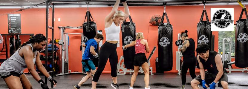 boxing franchise, gym franchise, Athens Franchise, Fun Franchise, Georgia franchise